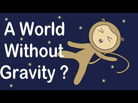 What If We Would Run Out Of Gravity ?