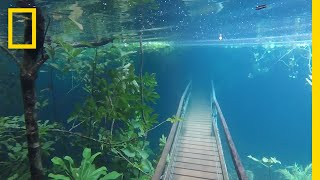 Download Youtube: Heavy Rains Submerge Hiking Trails in Crystal Clear Waters | National Geographic