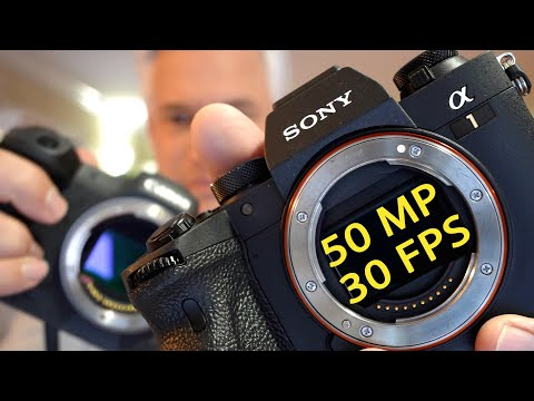 Sony a1 vs Canon R5: $6500 full-frame 8k 30 FPS MONSTER!!