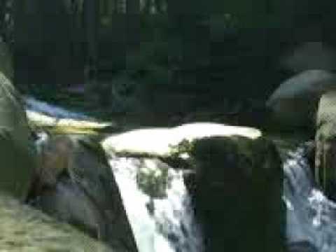 Górski potok - film relaksacyjny