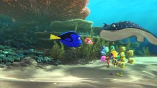 Nonton Trailer   N C  Utarea Lui Dory  Finding Dory 3d   2016  Dublat   N Rom  N   Film Subtitle Indonesia Streaming Movie Download
