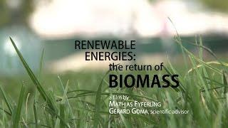 Renewable energies: the return of biomass