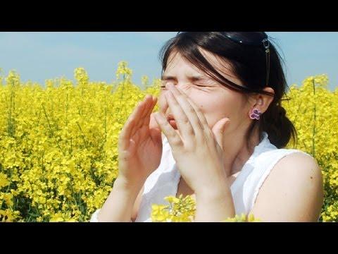Лечение народными средствами, аллергический ринит, сезонные аллергии, настойка из крапивы