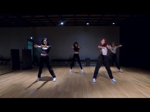 BLACKPINK - 뚜두뚜두 (DDU-DU DDU-DU) Dance Practice (Mirrored) - Thời lượng: 3 phút, 30 giây.