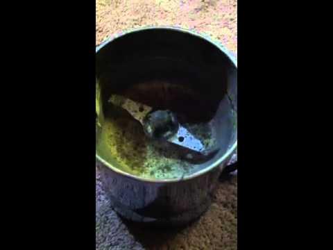 making hash oils