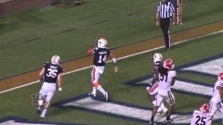 2013 Auburn vs Georgia Highlights