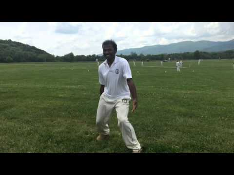 Charlottesville - Cricket Fun