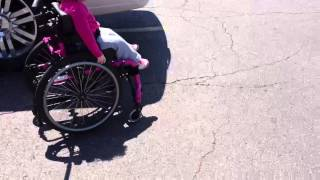 We may need to call State Farm and ask about liability coverage for Lucy's wheelchair.  She scuffed my rims and came close to taking out about a dozen fenders,  but day two of the wheelchair was a smashing success.