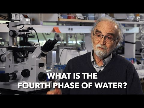 What is the Fourth Phase of Water? with Dr Gerald Pollack