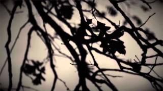 Video Apophysia feat.Jacinda Espinosa, SackJo22 - The White Cube (Kyri