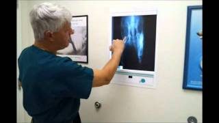 Pet Tips - Diagnosing Arthritis In Dogs And Cats