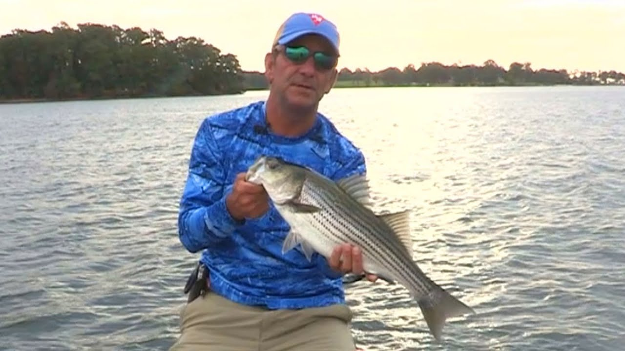 Videos main page fox sports outdoors for Lake murray sc fishing report