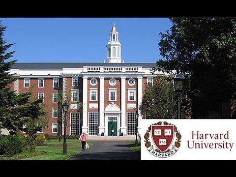 harvard university accepted essays
