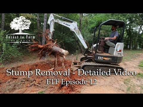 Clearing House Sites - Digging Stumps Detailed Video
