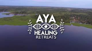 Maneesh de Moor remix Maestra Juanita Ayahuasca Icaro - Drone video
