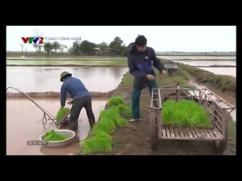 Người nông dân tại Thái Bình chế tạo thành công máy cấy lúa không động cơ