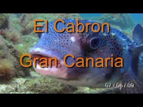 L A N D I V E . E S - El Cabrón - VideoSub - Canarias