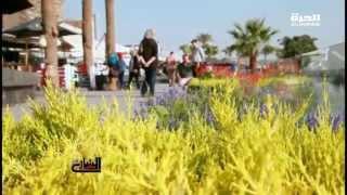 نايل تاكسي.. حل للاختناق المروري (فيديو)