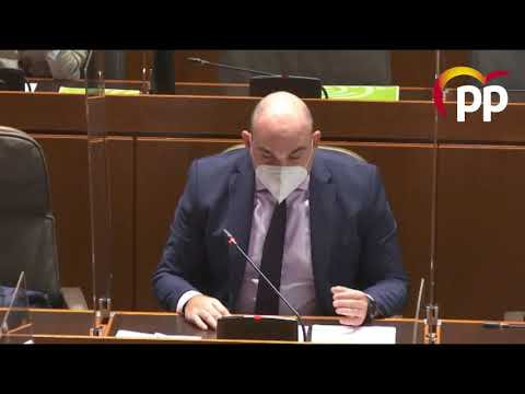 El PP propone impulsar la transformación del comercio frente al impacto de la COVID-19 y PSOE, Podemos, CHA y PAR lo rechazan