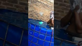 Ngintip ibu hamil mandi di kolam lele bioflok Video