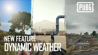 Обновление 19 для PUBG добавило систему динамичной смены погоды