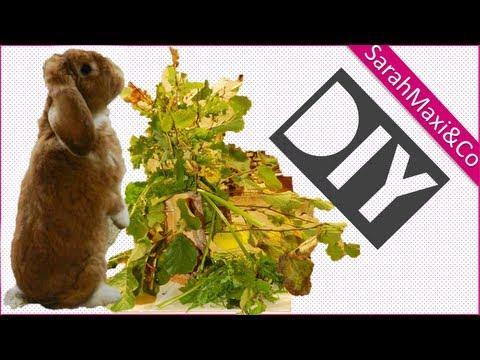 Kaninchen- Futterbaum - selber bauen machen basteln DIY  einfach (Kaninchenhaltung, Futter)