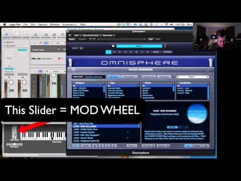 Intro to Omniverse Patches Video Tutorial