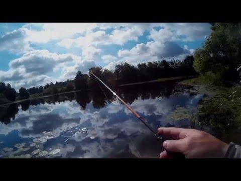 О рыбе и рыбалке на orybecom прогноз клева рыбы в вашем