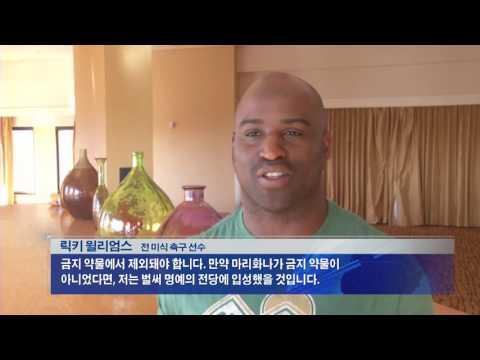 CA 마리화나 합법화, 가능성은  7.7.16 KBS America News
