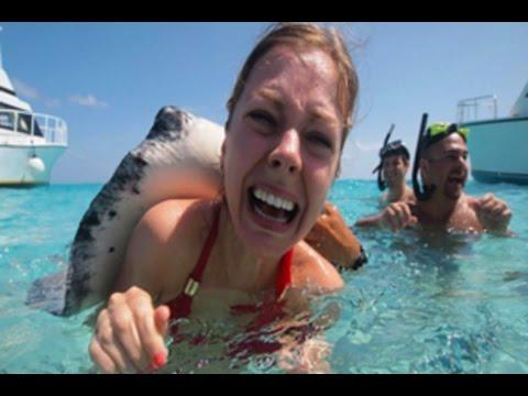 14 Ocean's Deadliest Creatures