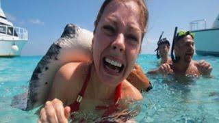 Video 14 Ocean's Deadliest Creatures MP3, 3GP, MP4, WEBM, AVI, FLV Februari 2019