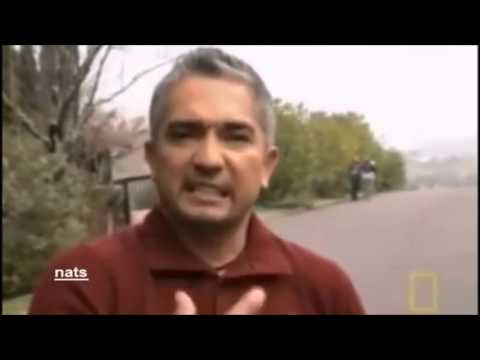 Cesar Millan And Shadow: Another Educational Example Of Improper Handling