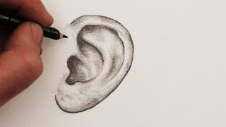 Learn a simple way to draw ears in this drawing for beginners. SUBSCRIBE: http://www.youtube.com/circlelineartschool I post a new art tutorial each Saturday. Top 6 Most popular Art Videos: http://bit.ly/2dB5O3UHow to Draw a Mouth and Lips: https://youtu.be/lXv9KzLEZtEHow to Draw Ears: Episode 235Circle Line Art School There are many ways to draw. In this art video I show some of the tricks I have discovered over the years that I use in my own art and my art teaching.How to Draw Ears: Step by StepIn this art tutorial for beginners I show you how to draw an ear step by step, starting with just two simple circles, we add a few curves, some shading using a tonal key, and then we are done!How to Draw a Female Face: http://youtu.be/9znM9joEwU4Music used in this art tutorial:Eternal Hope by Kevin MacLeod is licensed under a Creative Commons Attribution licence (https://creativecommons.org/licenses/by/4.0/)Source: http://incompetech.com/music/royalty-free/index.html?isrc=USUAN1100238Artist: http://incompetech.com/There are over 200 of my How to Draw art videos at: http://www.youtube.com/circlelineartschoolThank you for watching this art tutorial. I hope you find it useful for your own perspective drawing.I post a new free How to Draw video every week. If you would like to see more please subscribe here:http://www.youtube.com/circlelineartschoolHi, my name is Tom McPherson and I founded Circle Line Art School as an online art education resource for all. My aim is to inspire people to learn to draw and be more creative. I believe drawing is a wonderful way to appreciate the visual world and become more observant and creative.Circle Line Art SchoolMy web: http://www.circlelineartschool.comMy Instagram: https://www.instagram.com/circlelineartschool/Thank you for watching and have a great day! Tom McPhersonCircle Line Art Schoolhttp://www.circlelineartschool.comHow to Draw EarsDrawing Anatomy: Draw EarsRealistic Drawing: Draw an Ear Step by Step for BeginnersRealistic Ear Drawing