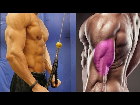The Best Way To Do Tricep Extensions