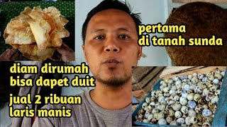 Video IDE BISNIS rumahan!!! Dog put MP3, 3GP, MP4, WEBM, AVI, FLV Mei 2019