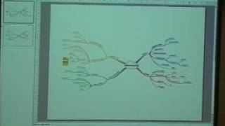 BUZZED 2009 (PART 9/10): MINDMAPPING FOR TEACHING- CLASSROOM AND ONLINE APPLICATIONS
