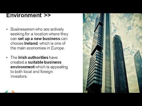 Types of Companies in Ireland