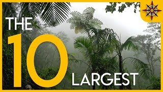 Video The 10 Largest Forests on Earth MP3, 3GP, MP4, WEBM, AVI, FLV Juni 2019