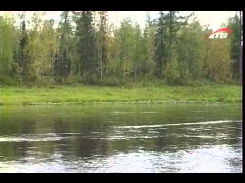 рыбалка на сухой тунгуске видео