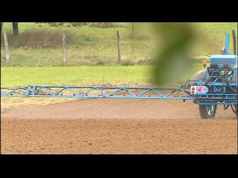 Glyphosat: Demo gegen Monsanto-Kauf durch Bayer in Lyon