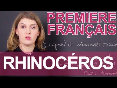 Rhinocéros, Ionesco - Français - 1ère - Les Bons Profs
