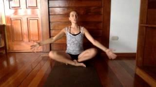 Video Yoga for Grief - For Sarah - NickyCJones.com MP3, 3GP, MP4, WEBM, AVI, FLV Maret 2018