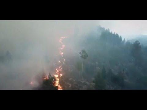 SOMMERHITZE: Waldbrände wüten in Schweden