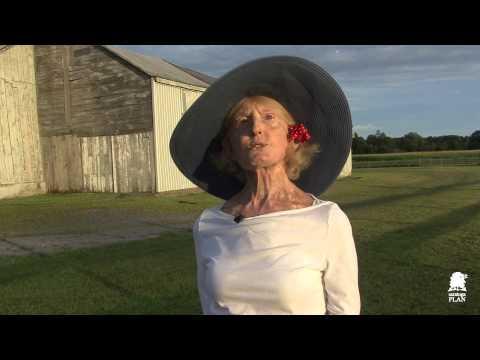 saving the Pitney Farm