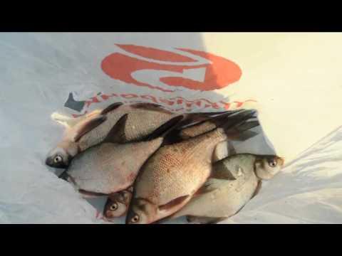 ловля рыбы на яузе