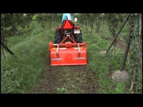 Kubota B2420 - 24 hp tractor + Italian - IDROget Sprayer 600 litres + Rotary Tiller +  Cultivator