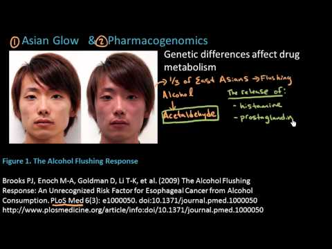 AsianGlow - Help us caption and translate this video on Amara.org: http://www.amara.org/en/v/B5Et/ An explanation of the Asian Glow (Asian Flush) or alcohol induced flus...