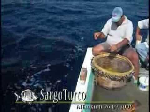 Paragat  Avcılığı - Longline Fishing