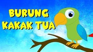 Burung kakak tua | Kumpulan | Lagu Anak TV Video
