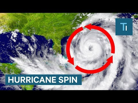 Here's why all hurricanes spin counterclockwise